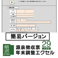 源泉徴収票・年末調整エクセル29年版 簡易バージョン ライセンス