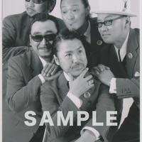 THE APOLLOS / マルベル堂プロマイド MP-127
