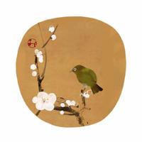 Hidetoshi Mito 梅に鶯