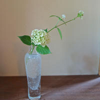 Kaori Kawanabe 吹きガラス花器