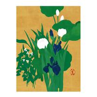 Hidetoshi Mito 燕子花と蓮