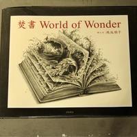 [焚書 World of Wonder]         著: 鴻池朋子
