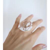 Grass,silver ring [Herman Hermsen]