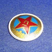 中国人民解放軍八七式帽章(プラスチック製)陸軍