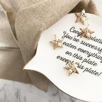 【Ornate star】ピアス&イヤリング