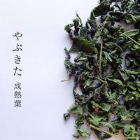 【なくなり次第終了!萎凋釜炒り茶 華菜シリーズ】2020年 春 やぶきた 成熟葉