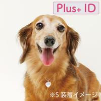 電話番号のいらない迷子札 【Plus+ ID 付】/ ハート(S)