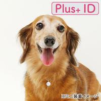 電話番号のいらない迷子札【Plus+ ID 付】/サークル(SS)
