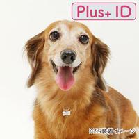 電話番号のいらない迷子札【 Plus+ ID 付】/ボーン(SS)
