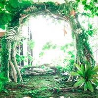 草木をふんだんに使った流木アート「Green Arch」