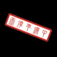 四つ編みレザーリード(ホワイト×ブラス)