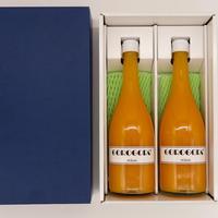 ジュース用化粧箱(2本用)