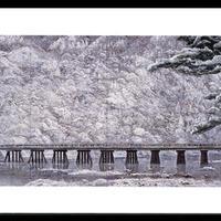 絵はがき:新雪嵐山