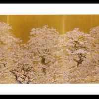 絵はがき:初桜遊行俯瞰図