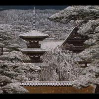 絵はがき:大和の雪 (第72回日本芸術院賞・恩賜賞受賞作)