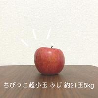 【送料無料・限定10箱】お得!ちびっこふじ 超小玉約21玉☆味はお墨付き