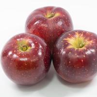【2020年販売終了しました】秋映5kg☆農家直送 少し硬めで果汁たっぷり濃厚