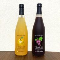 希少!長野県産高級ぶどう&りんご100%ジュース2本セット【ナガノパープル&シナノゴールド】