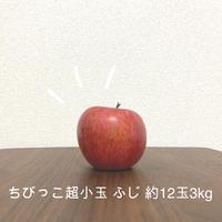 【送料無料・限定10箱】お得!ちびっこふじ 超小玉約12玉☆味はお墨付き