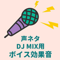 DJ MIX用効果音商品155 「Ladies and gentlemen」と「Summer party mix」の文言入り