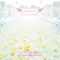 「ソルフェジオ528  幸せな恋愛 結婚へのサポート 祝福のCD」 ローズフラワー・マリアージュ・メディテーション