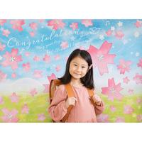 ★期間限定 おうち写真館 sakura (2色展開)  【Mサイズ:縦841 × 横1189 mm】 [bdi]
