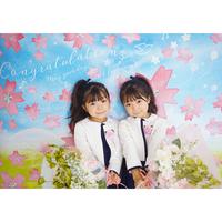 ◆期間限定 おうち写真館 sakura (2色展開)  【Lサイズ:縦1030 × 横1456 mm】 [bdi]