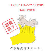 LUCKY SOCKS / 福袋2020 【S , M , L 】1/4以降の発送となります