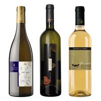 心踊る春 イタリア白ワイン3本セット