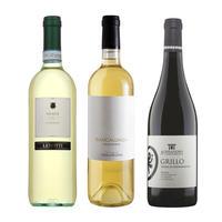 秋の白ワイン3本セット 紅葉