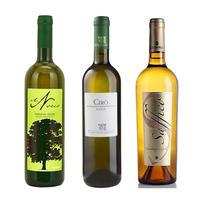 春うらら 白ワイン3本セット