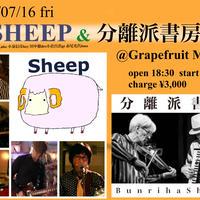 【応援投げ銭商品】7/16『SHEEP&分離派書房』