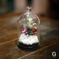 Glass Dome Flower S (gd-05)
