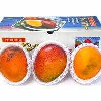 《2021年度予約販売開始!》【訳あり】沖縄県産完熟マンゴー 1kg前後(3個入)(AmazonPay全品対応)