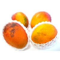 【訳あり】沖縄県産完熟マンゴー 1.5kg(4〜5個入)(AmazonPay全品対応)