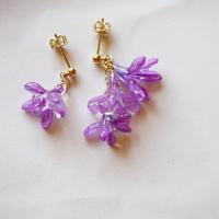 "【petal series】blooming pierce/earrings ""lapeirousia"""