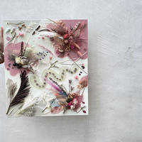 "drawing flower  ""swallowtail butterfly"""