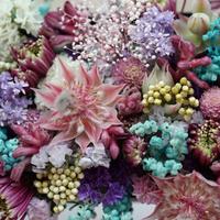 事前ご予約者様限定【into Flowers】着物付けご希望のお客様