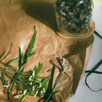 rosendals trädgård/Glass Obje