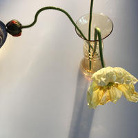 Flower Base/リヒンマキグラス ye