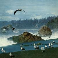 あれかしの歌/目覚めた鳥  [7inch vinyl]