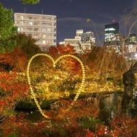 【リンク 花、空…】みゅうにゃんさんの花、風景、写真紹介です