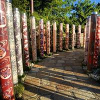 【リンク  花…京都】京都在住 ひとみさんの京都ぶらり画像&虫も動物も警戒心ゼロ接写画像など紹介です