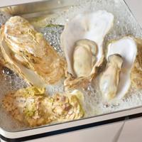 知内産 生牡蠣 酒蒸しガンガン焼きセット