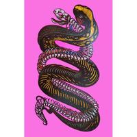 「Skeleton - animal 18 -」西橋 伸太郎