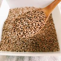 洗い白えごま 100g(長崎県産)エゴマの栄養を皮のまま丸ごと摂りたいあなたに!