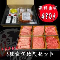 大阪鶴橋焼肉6種食べ比べ 480g【キムチ&タレセット付】