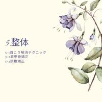 5.整体(DVD/microSDカード)