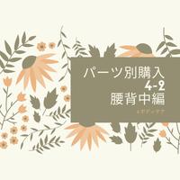 4-2 パーツ別購入 腰背中編(DVD/microSDカード)