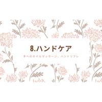 8.ハンドケア(DVD/ microSD)